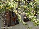 karabuk-safranbolu_5259