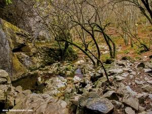 Dupnisa Mağarası orman Yolu 2013