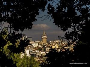 İstanbul Botanik Bahçesinden İstanbul Manzarası