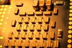hakanalemdar-macro-techno-03-4197