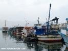 Şile balıkçı barınağı