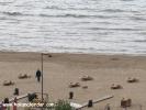 Şile plaj resimleri,